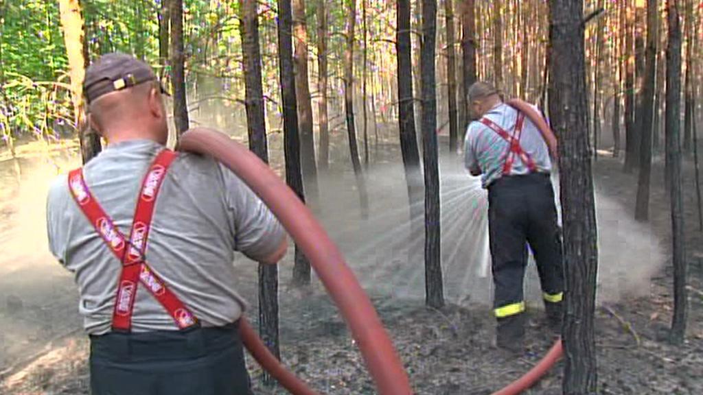 Hasiči polévají les u Bzence