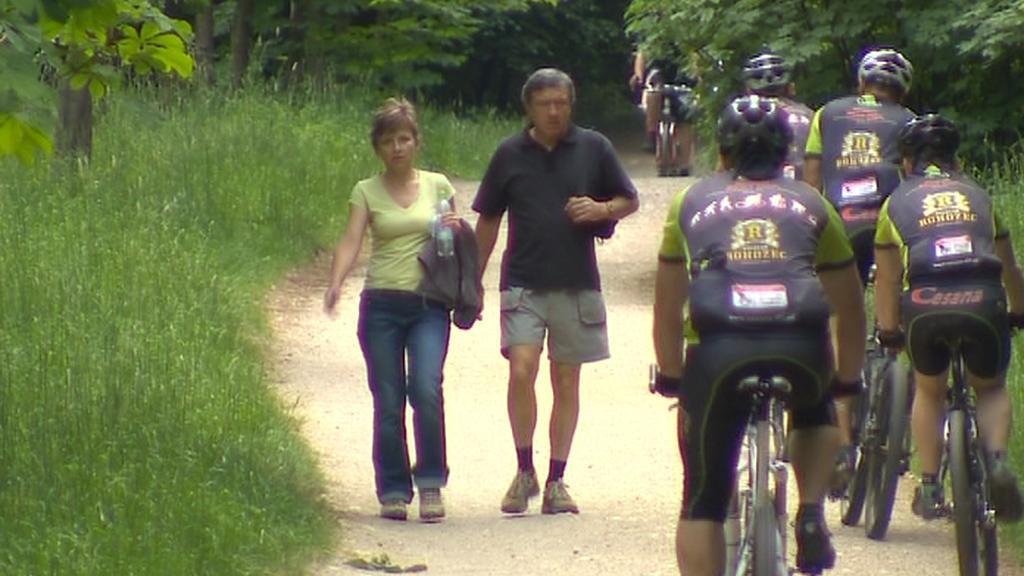 Stezka pro pěší i cyklisty