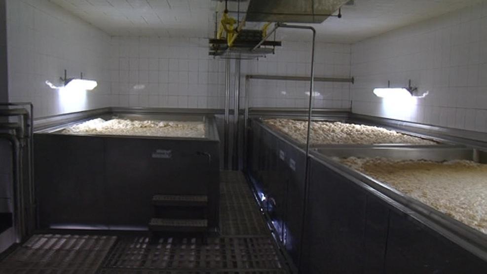 Výroba pivní limonády