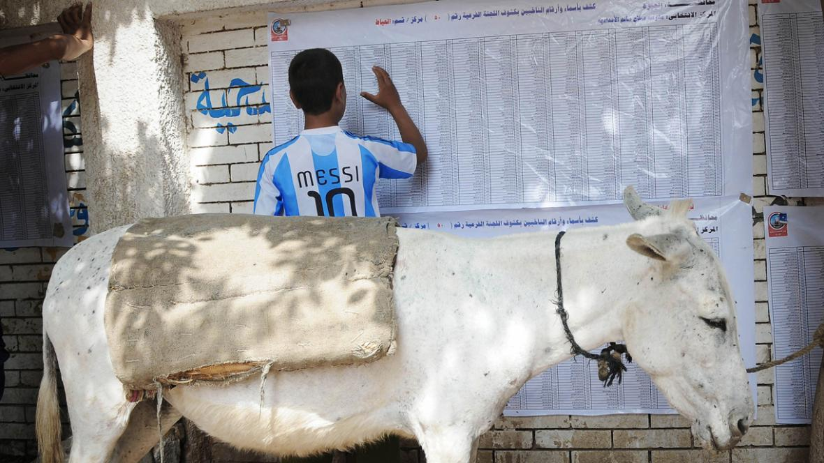Seznamy egyptských voličů