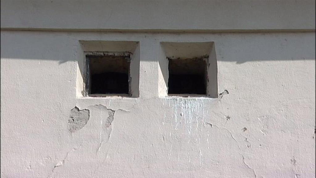 Hnízdo poštolky