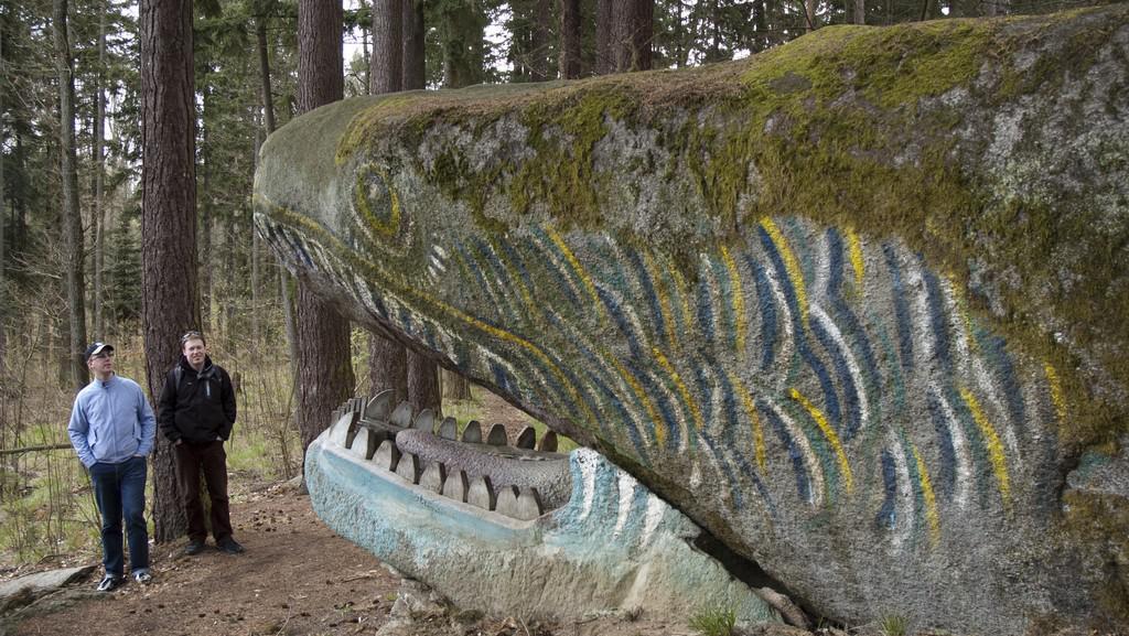 Kamenný drak na vrchu Prašivice (Nalžovské Hory)