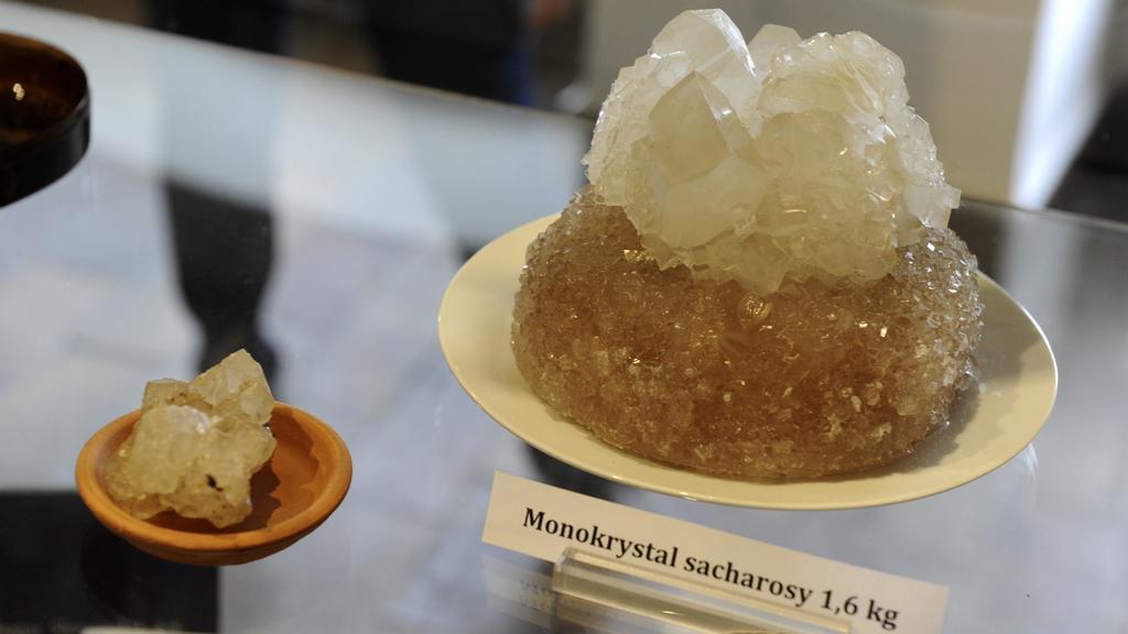 Výstava cukru v Lounech