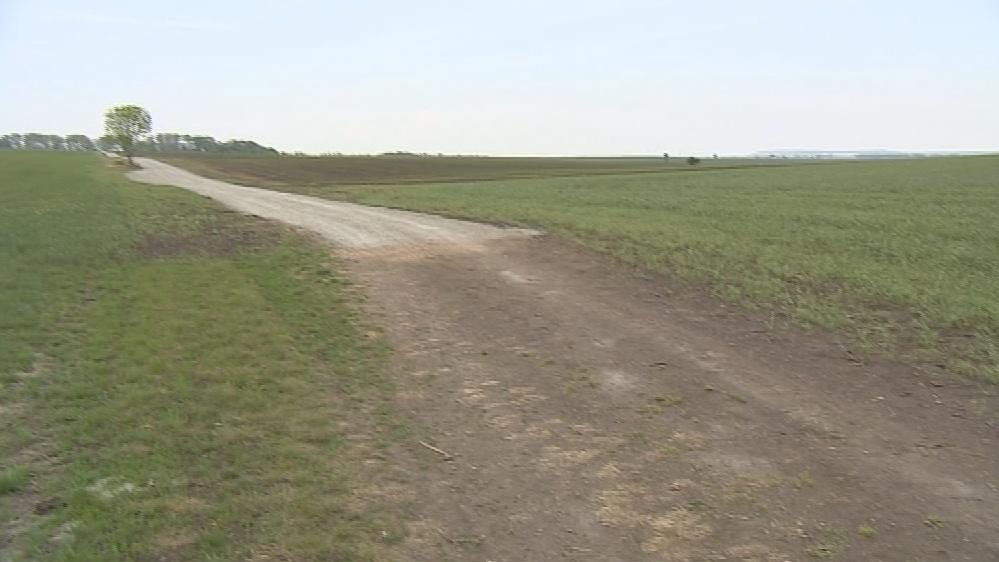 Cesta uprostřed polí končí na hranici katastru Tuřan