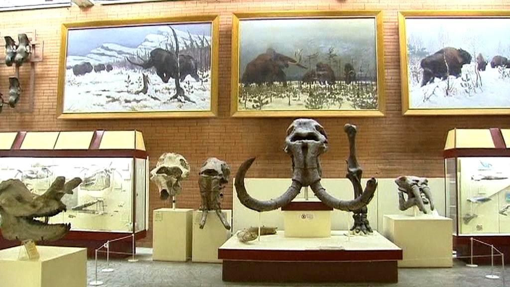 Mamutí výstava