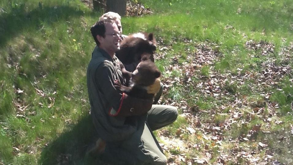 Medvíďata opustila porodní box