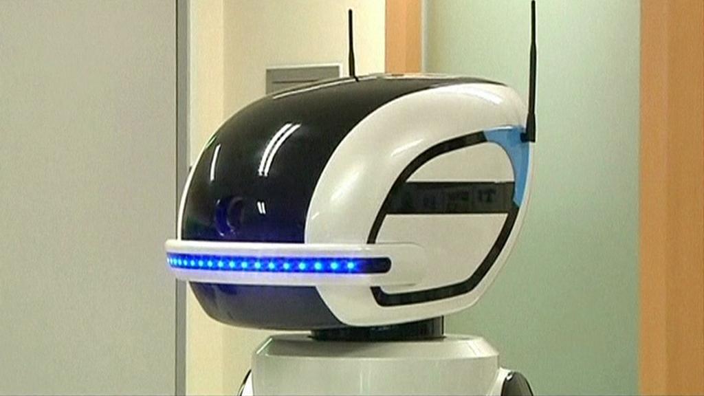Robotický hlídač