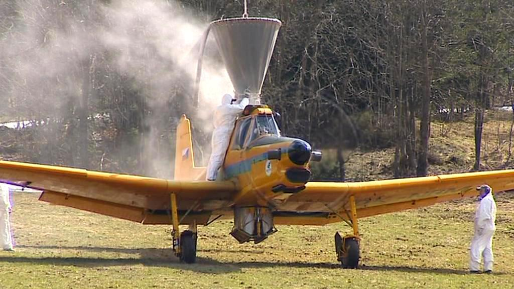 Plnění letounu vápencem