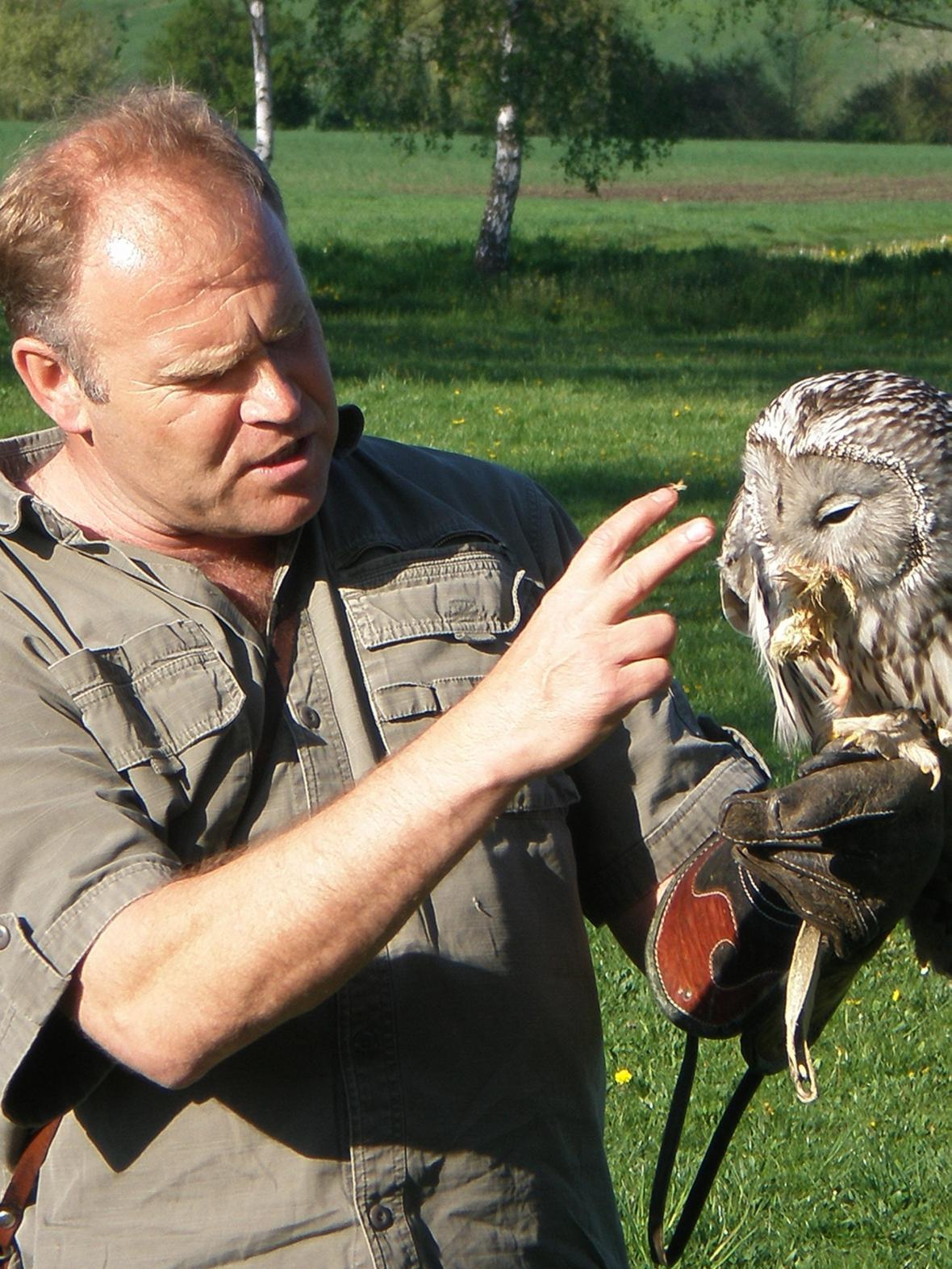 Přehlídka dravých ptáků v Košticích