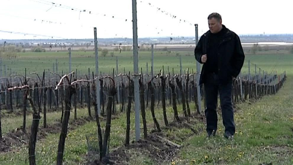 Vinař roku František Mádl