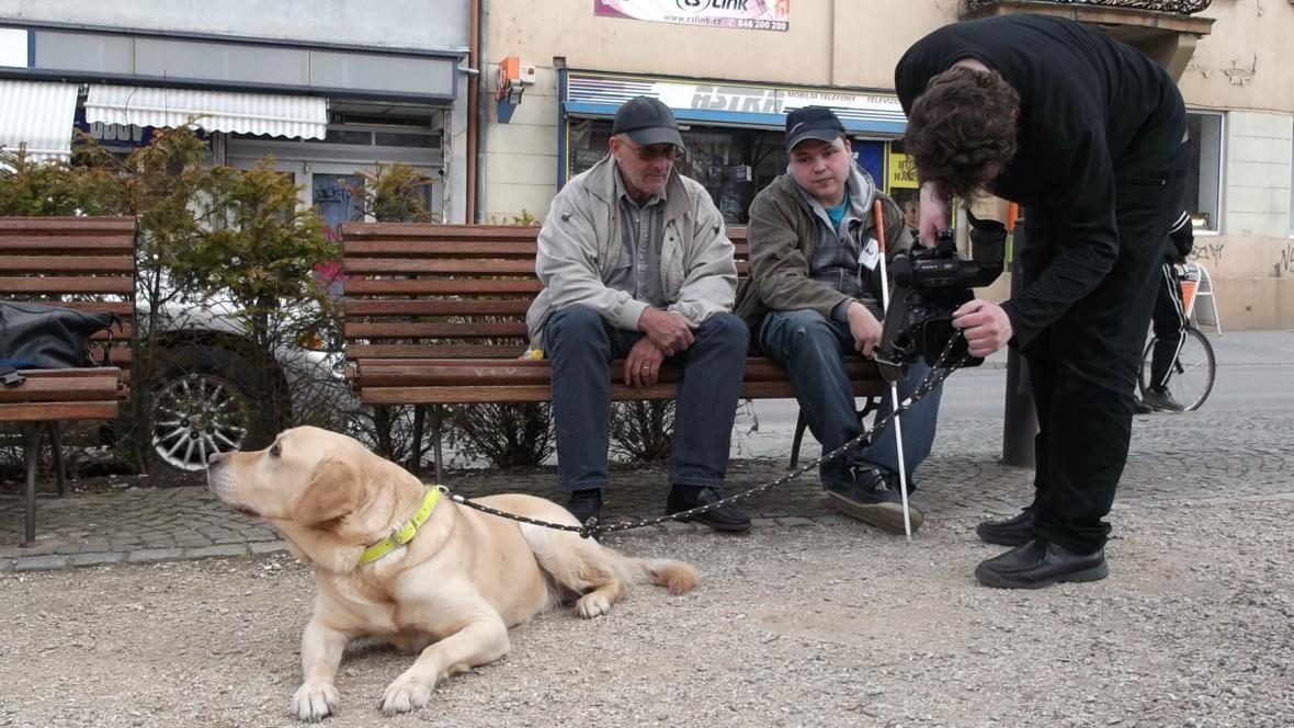 Vodicího psa známý dokumentarista nerozhodil