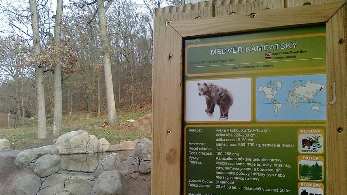 Výběh medvědů kamčatských v brněnské zoo