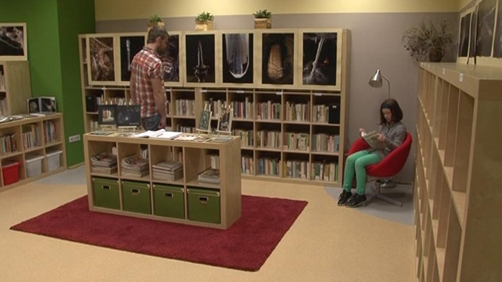 Knihovna ve Veselicích