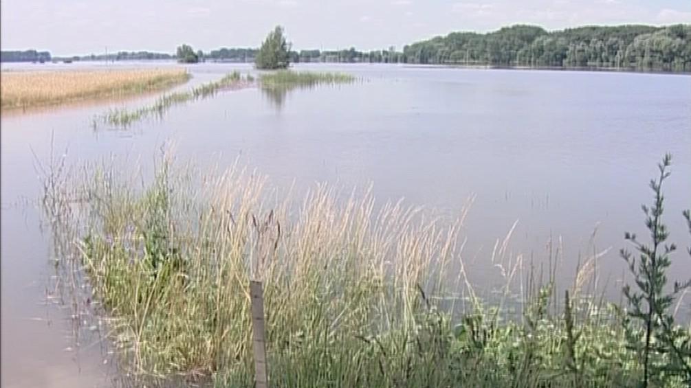 Pole zaplavené u Novosedel