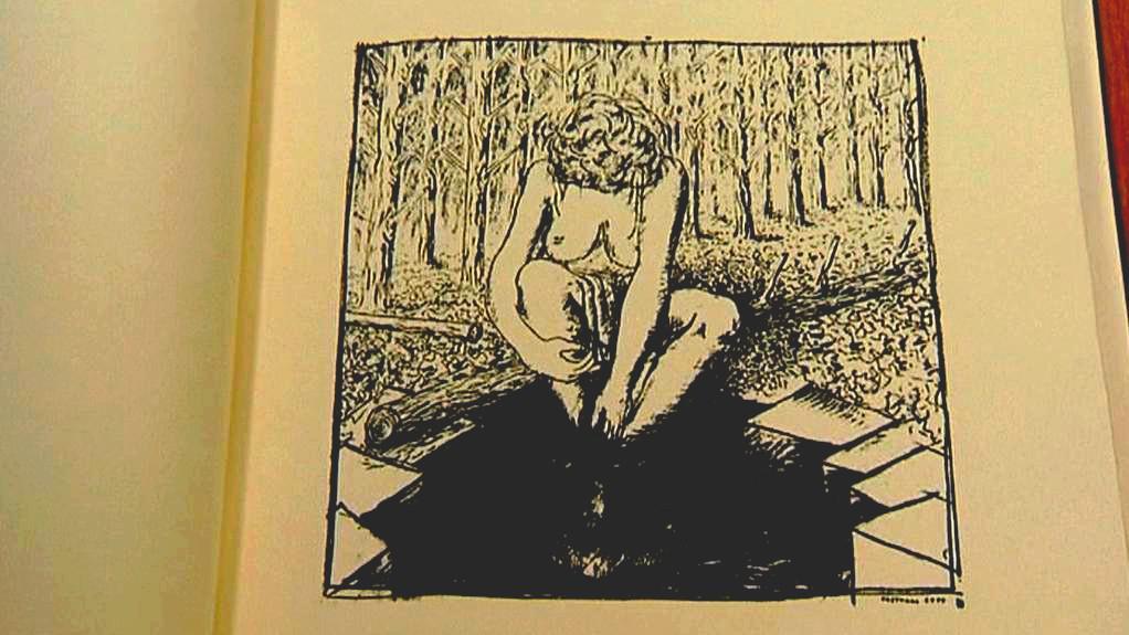 David Cajthaml / Lesní kresby