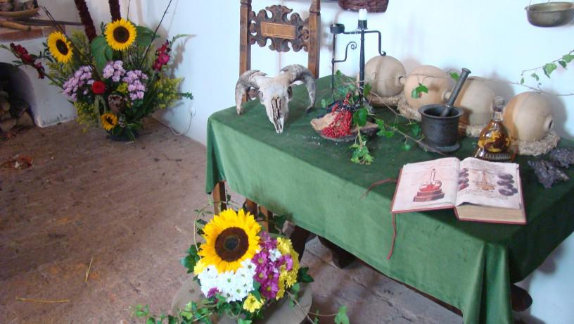 Květinové výstavy na hradech a zámcích 2012