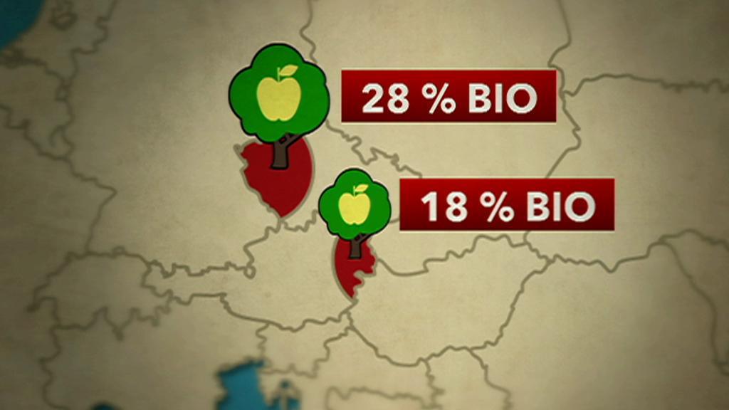 V Česku je víc biopěstitelů než v Rakousku