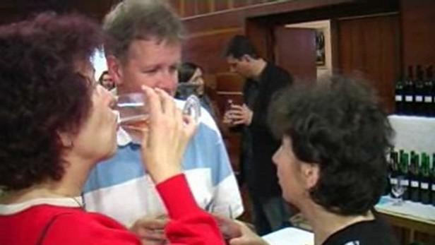 Josefovský košt vín v Popovicích