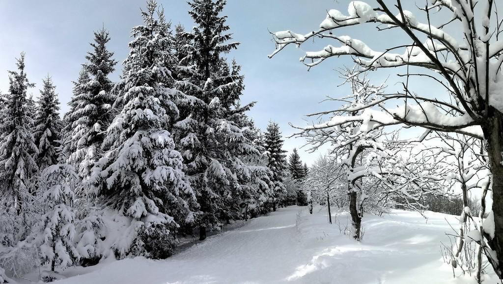 Zima v Krušných horách