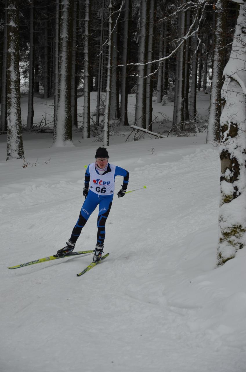 Ze závodů Českého poháru Novém Městě v Krušných horách