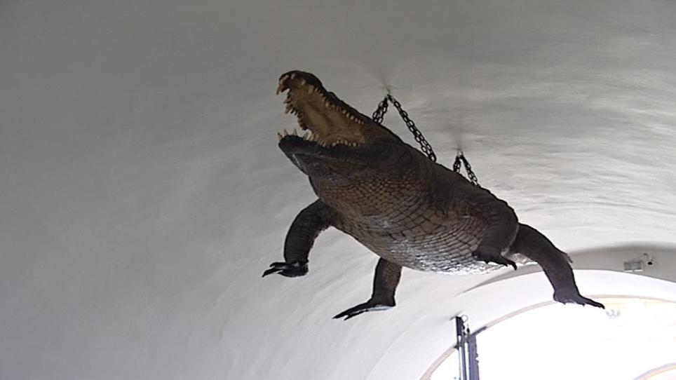 Brněnský krokodýl (drak)