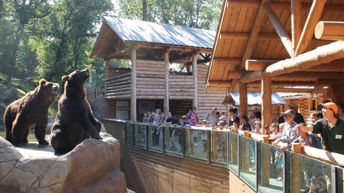 Kamčatka, Jelizar a návštěvníci zoo