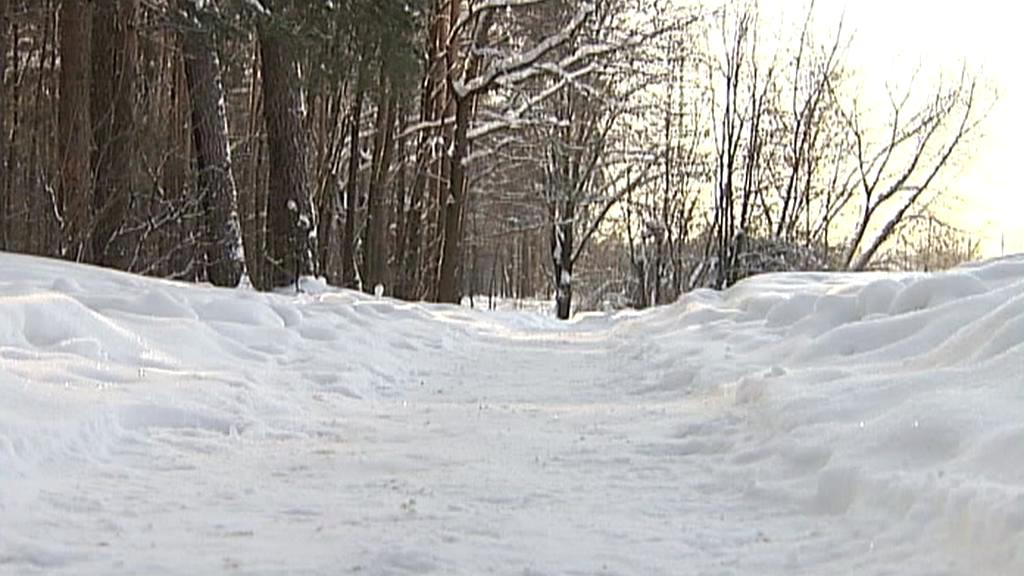 Park ve městě Balašicha, kde vraždil gang ruských výrostků