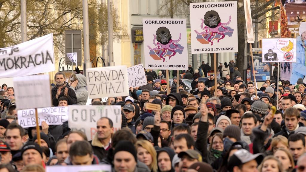 Demonstrace proti Gorile