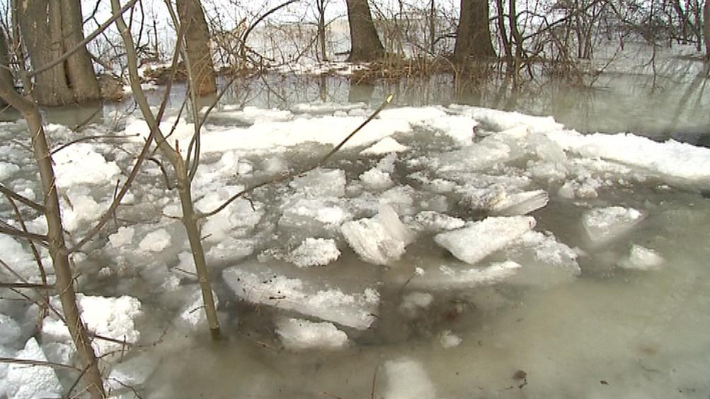 Ledová tříšť na hladině náhonu