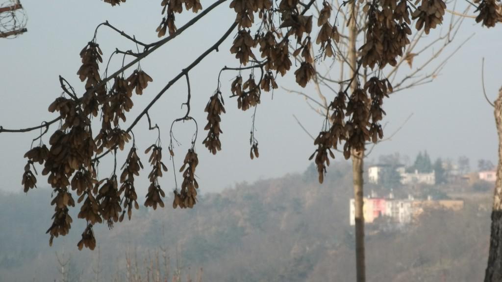 Smog vytvořil opar, který zhoršuje viditelnost