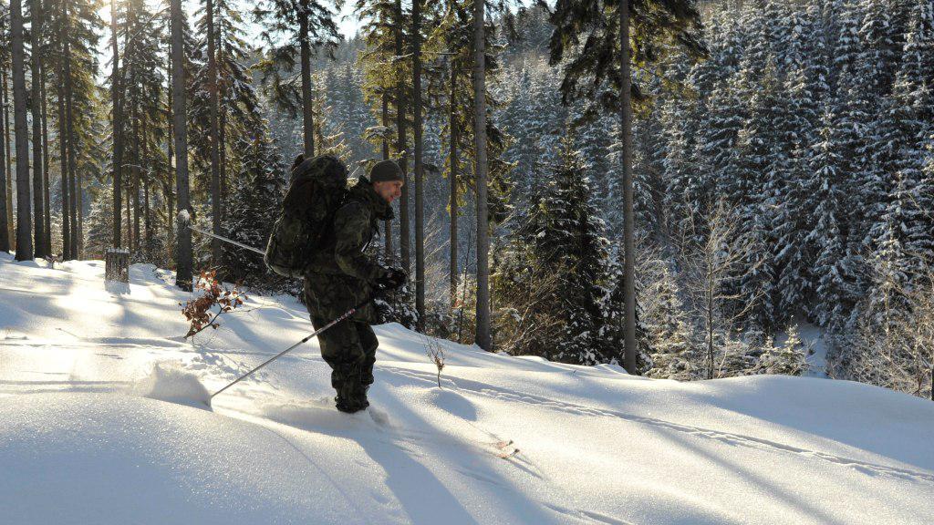 Soutěž Winter Survival