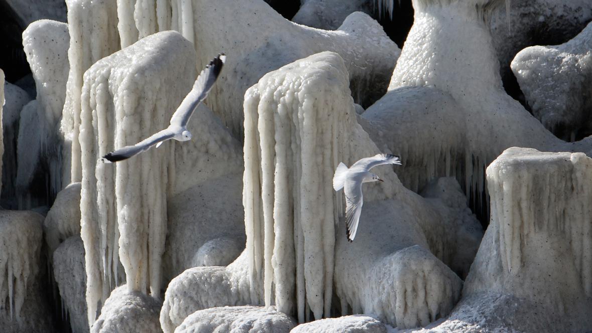 Zamrzlé pobřeží u rumunské Konstance