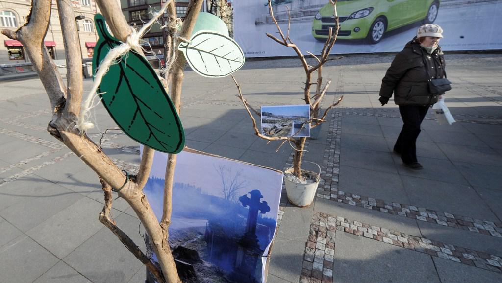 Stromky na Palackém náměstí