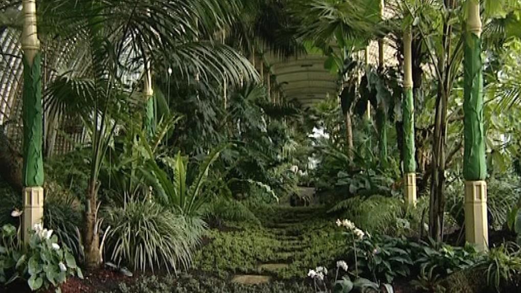 Skleník ukrývá stovky exotických druhů rostlin