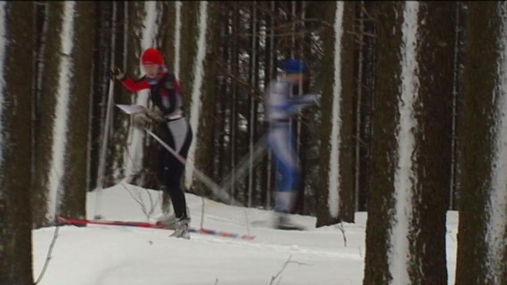 Běh na lyžích, začátek Českého poháru