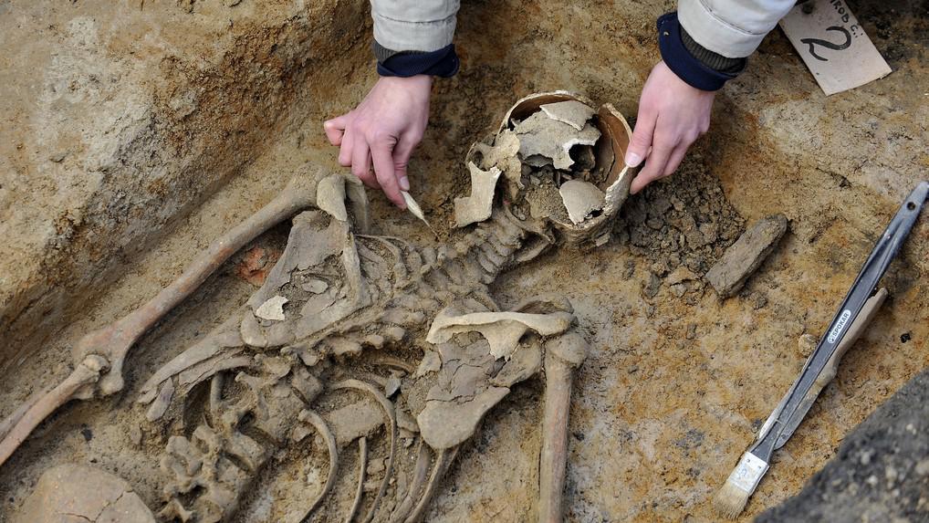 Objevení hrobu vampýra Tobiáše