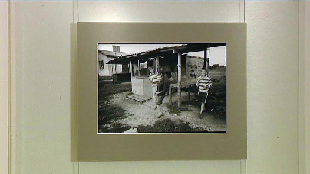Fotografie z výstavy