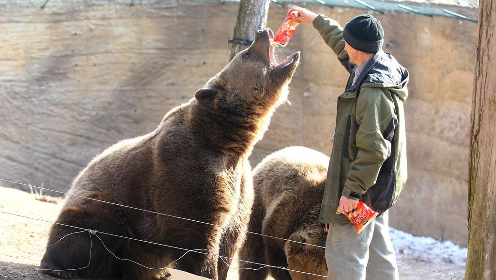 Plzeňská zoo