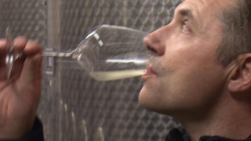 Syn pana Kosíka má na starosti zpracování vína