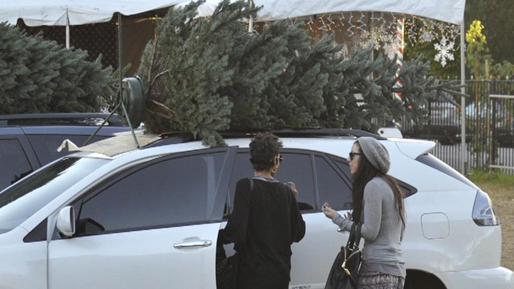 Stromek na střeše auta
