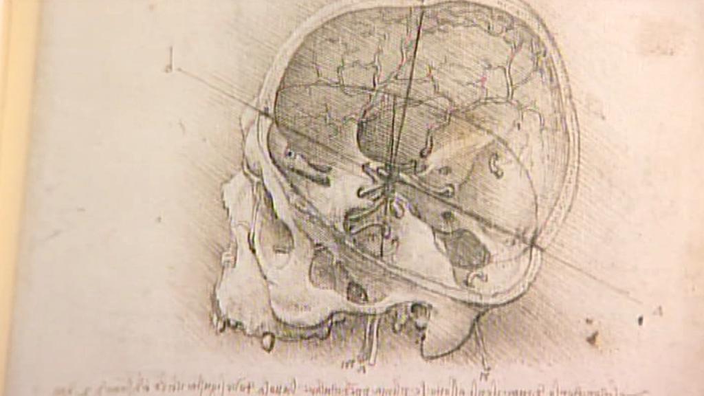 Kresba Leonarda da Vinciho