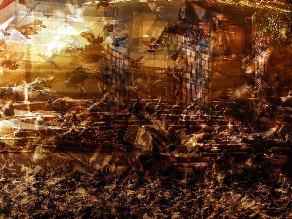 Fotografie Marka Floriana - z výstavy v Písku