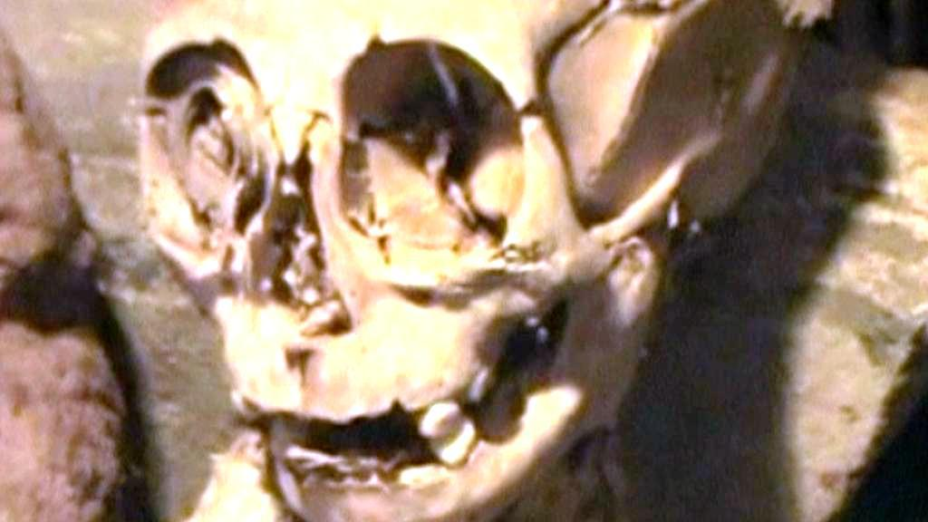 Pozůstatky mumie