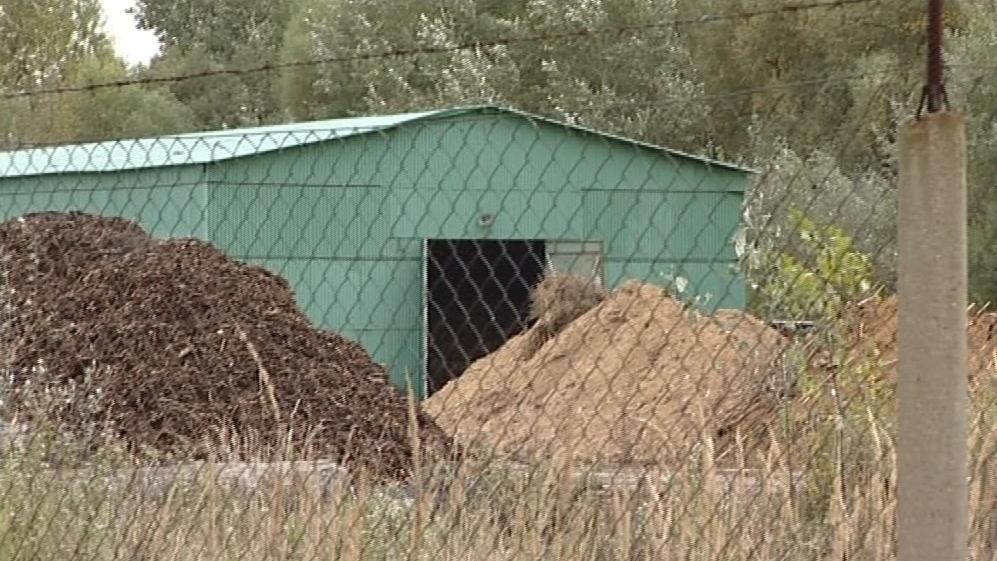 Továrna na výrobu dřevní štěpky v Hodoníně