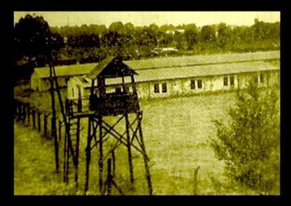 Stalag VIII D