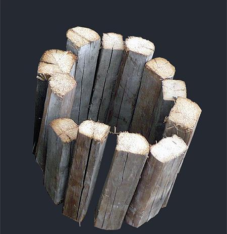 Dřevo- Wood 2011