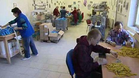 Zdravotně postižení v práci