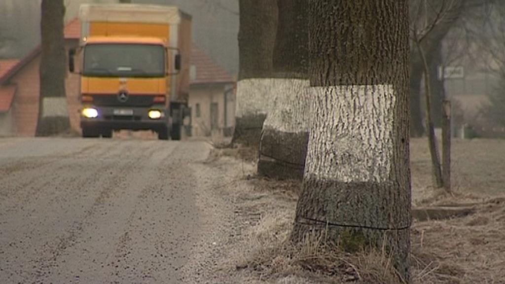 Poškozené stromy