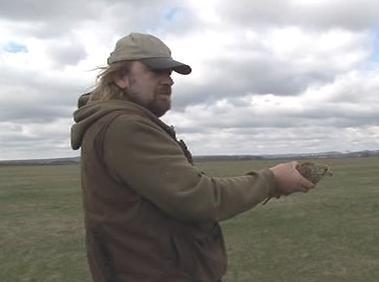 Vypouštění ptáka do přírody