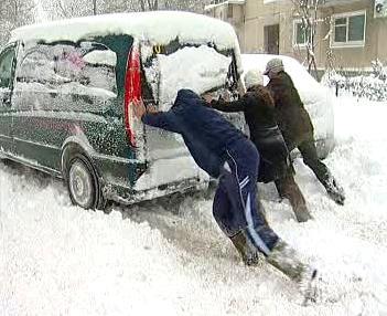 Sněhová kalamita
